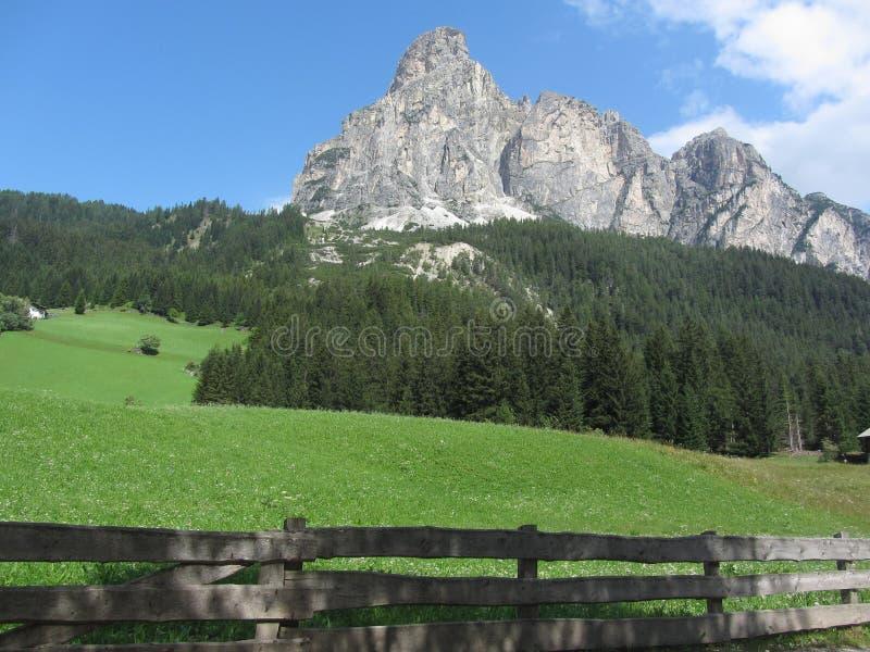 Alpien landschap met groene weilanden en sparren tegen Italiaans Dolomiet bij de zomer Weergeven van La-Villadorp, Bolzano royalty-vrije stock fotografie