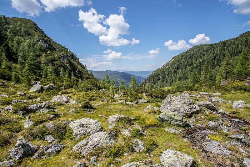 Alpien landschap: Steenachtige weide, bos, bergen en blauwe hemel stock afbeelding