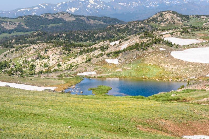 Alpien meer langs de Beartooth-Weg Yellowstonepark, Pieken van Beartooth-Bergen, het Nationale Bos van Shoshone, Wyoming, de V.S. stock fotografie