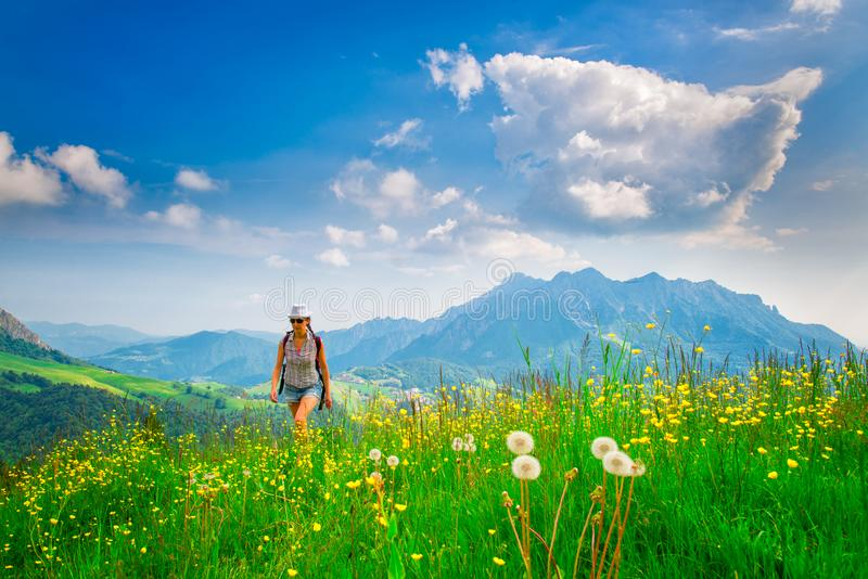 Alpien wandelend eenzaam meisje in een bloemrijke weide stock foto's