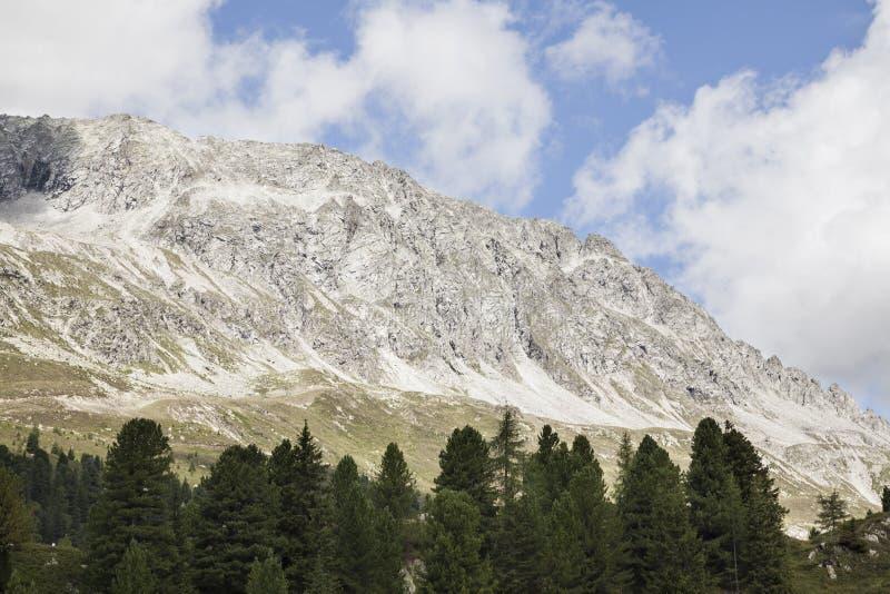 Alpiene bergpiek met bomen in voorgrond. stock afbeelding