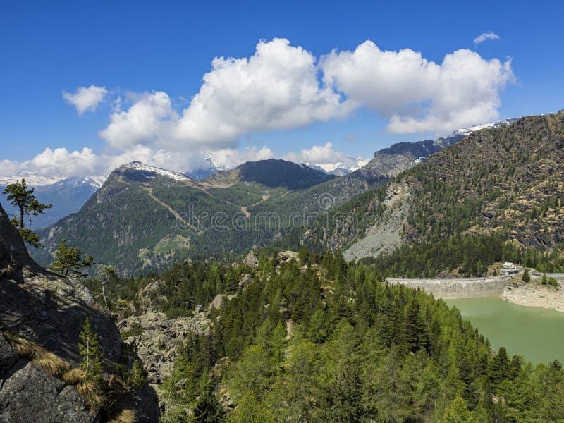 Alpiene dam royalty-vrije stock fotografie