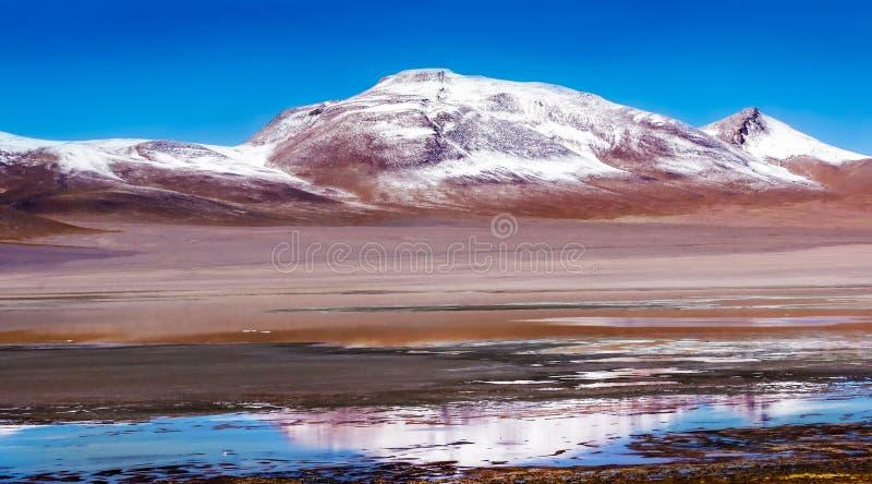 Alpiene meren en de snow-capped vulkaan in de Boliviaanse Andes Boliviaanse altiplano Natuurlijk panoramisch landschap royalty-vrije stock afbeelding