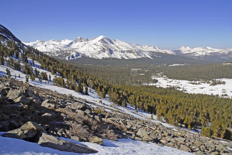 Alpiene scène met sneeuw afgedekte bergen in het Nationale Park van Yosemite stock foto