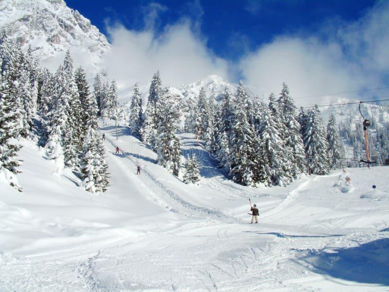 Alpiene Skiërs op sneeuwhellingen stock fotografie