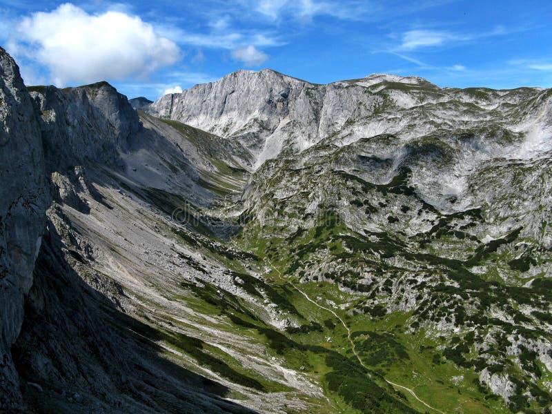 Alpiene vallei stock foto