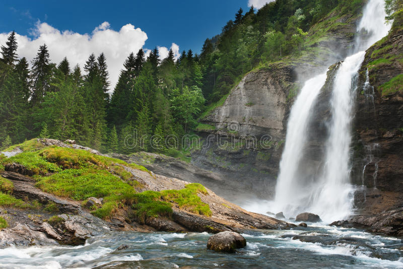 Alpiene waterval in bergbos stock afbeelding