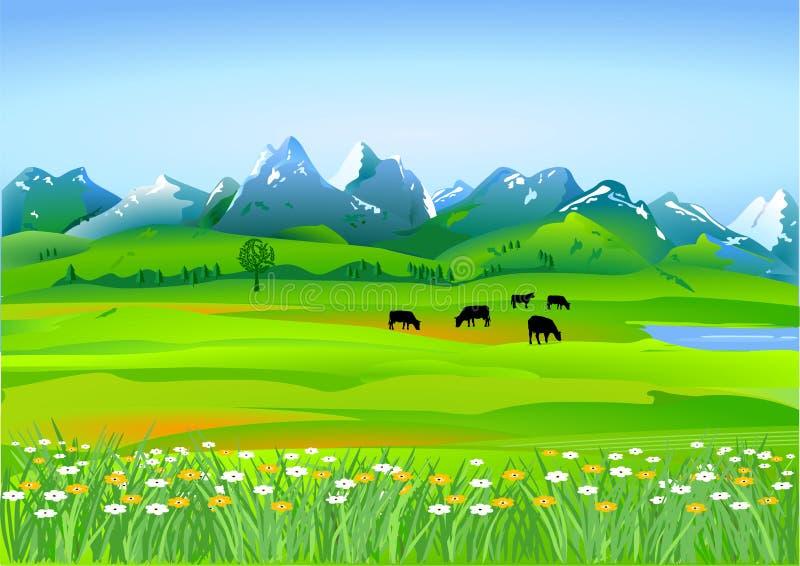 Alpiene weiden vector illustratie