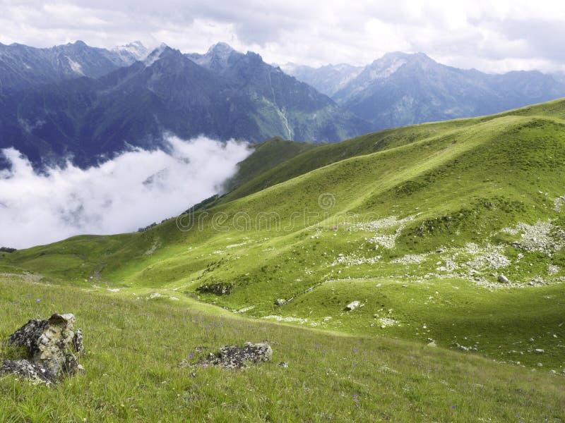 alpin äng Solsken över grönt gräs och dystra berg bakom royaltyfri fotografi
