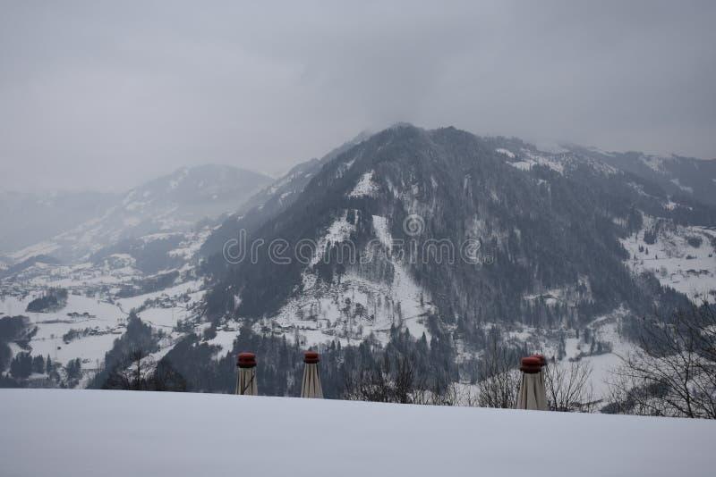 Alpin eftermiddag arkivbilder