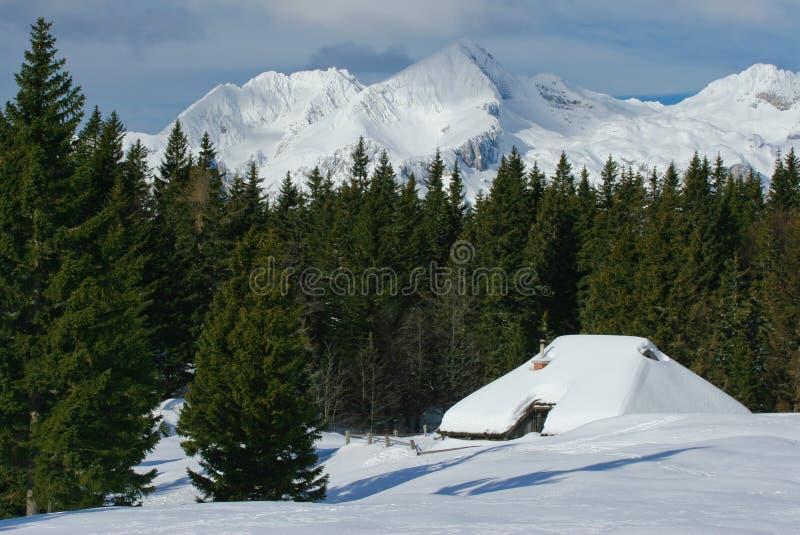 alpin kojasikt royaltyfri foto