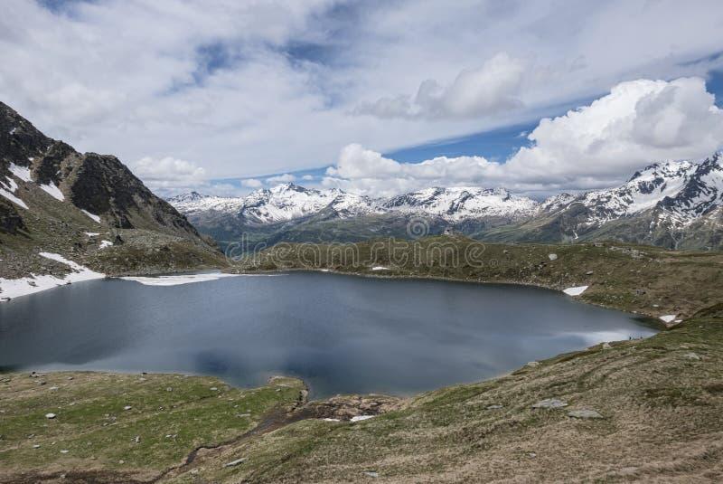 alpin panorama royaltyfri bild