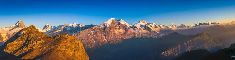 Alpin panorama: Eiger norr framsida, schweiziska fjällängar arkivfoton