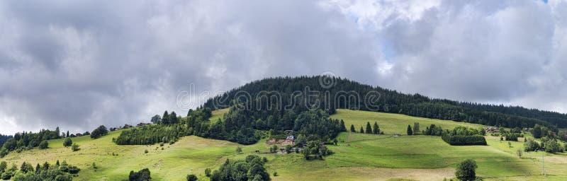 Alpin panorama för sommar med den soliga ängskogen och hus arkivbild