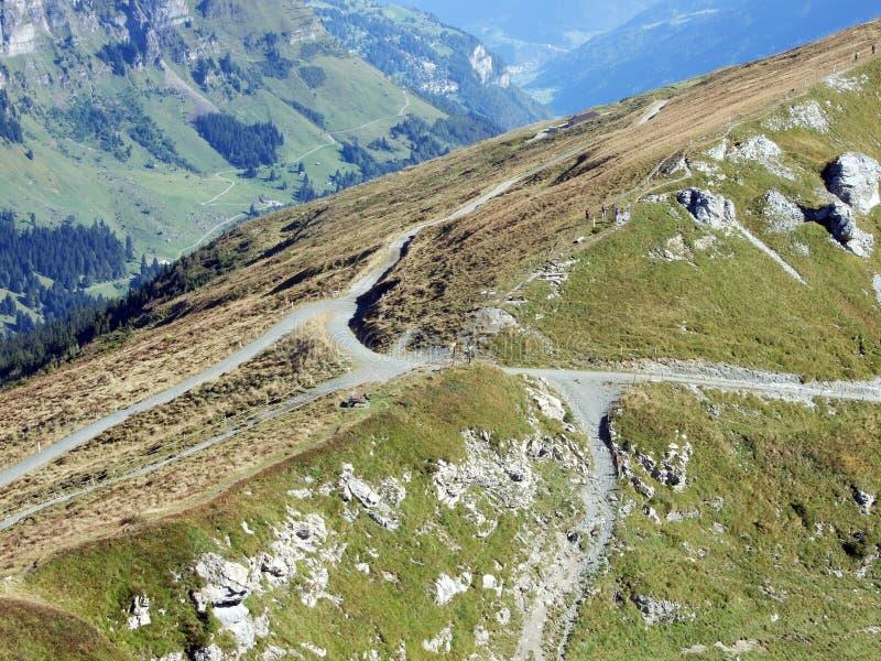 Alpin passage Fisetenpass, ovanför bäcken Fisetenbach royaltyfri fotografi