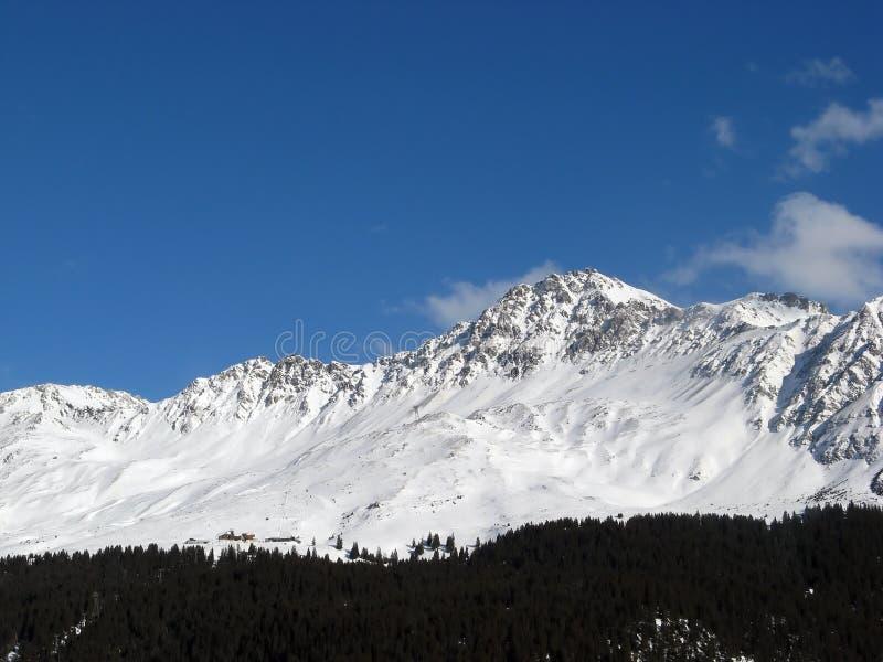 alpin sikt fotografering för bildbyråer