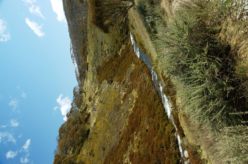 alpin vildmark royaltyfri foto
