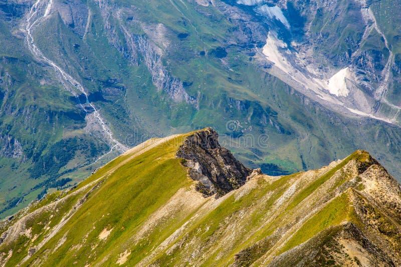 Alpina ängar och maxima royaltyfri bild