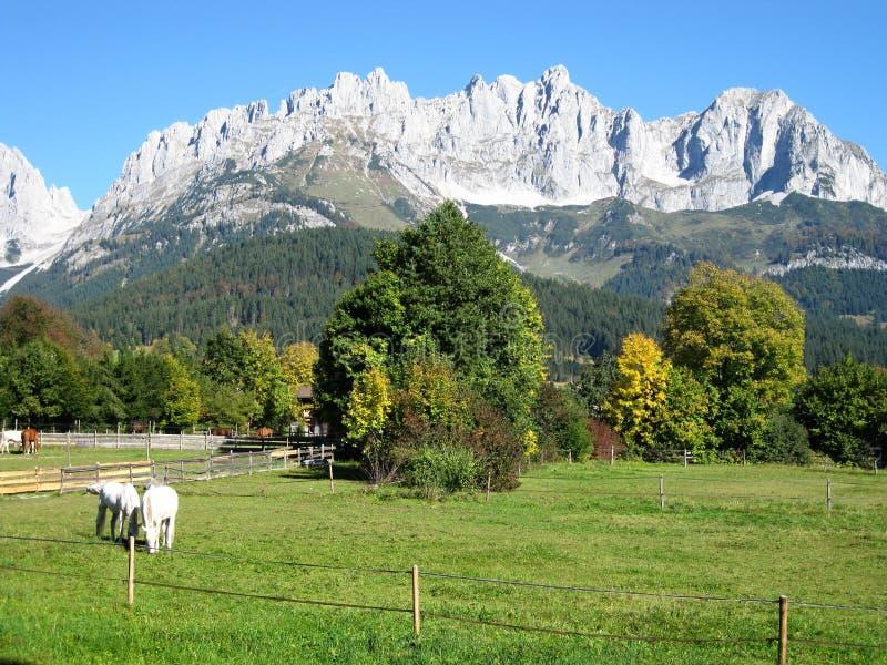 Alpina bergstopp arkivbild