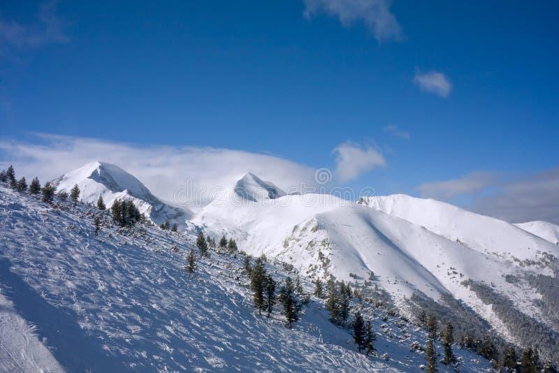alpina bulgaria skidar lutningsvinter royaltyfri fotografi