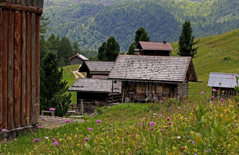 Alpina kojor i Valfredda (den Fassa dalen) royaltyfri bild