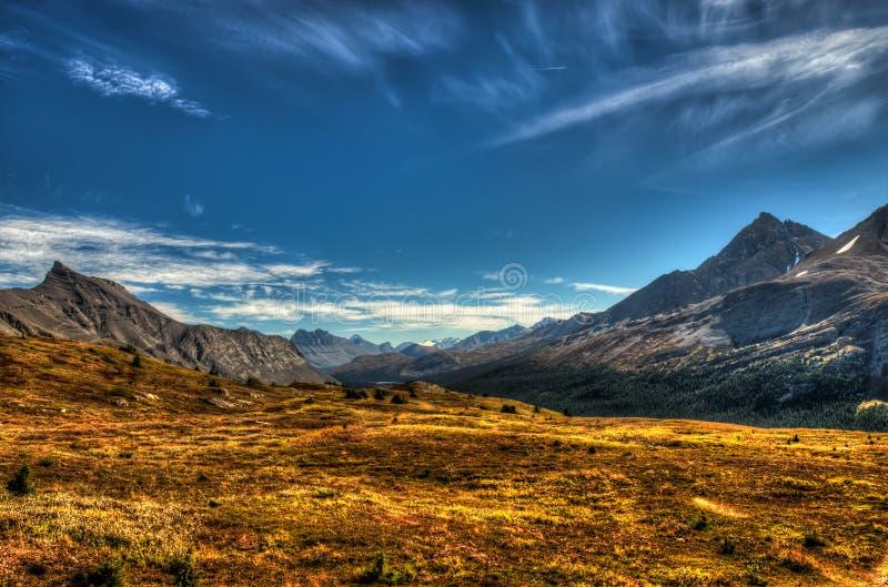 Alpina sikter royaltyfri foto