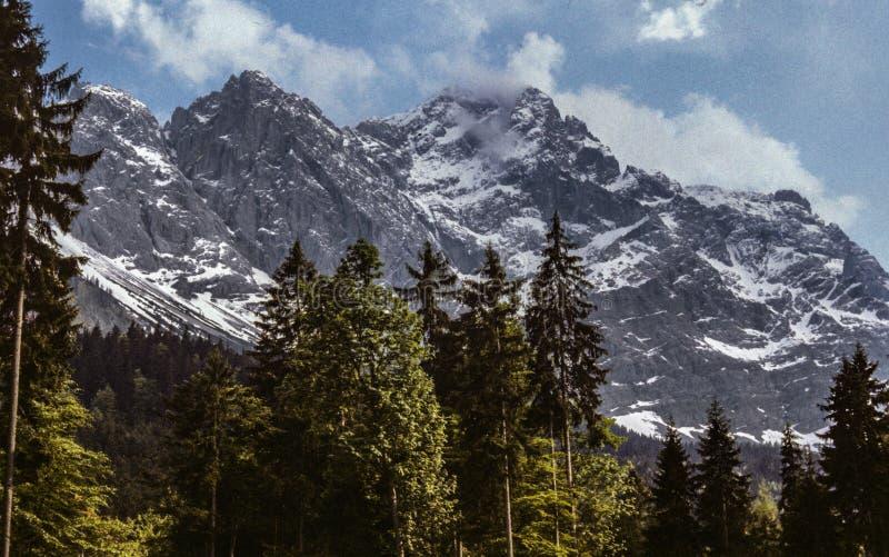 Alpina toppmöten av fjällängberg dammade av med snö royaltyfri fotografi