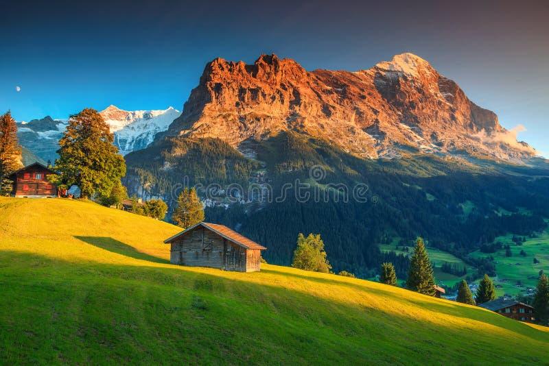 Alpine Chalets mit grünen Feldern und Hochgebirge bei Sonnenuntergang stockfotografie