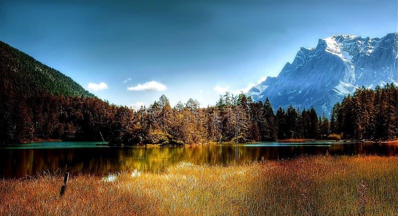 Alpine, Conifer, Dawn royalty free stock photos