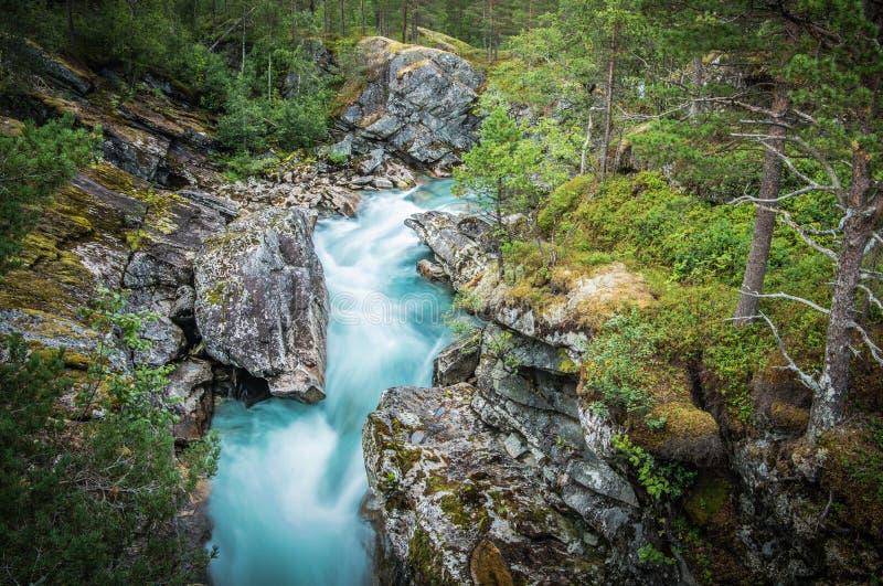 Alpine Creek scenico fotografie stock libere da diritti