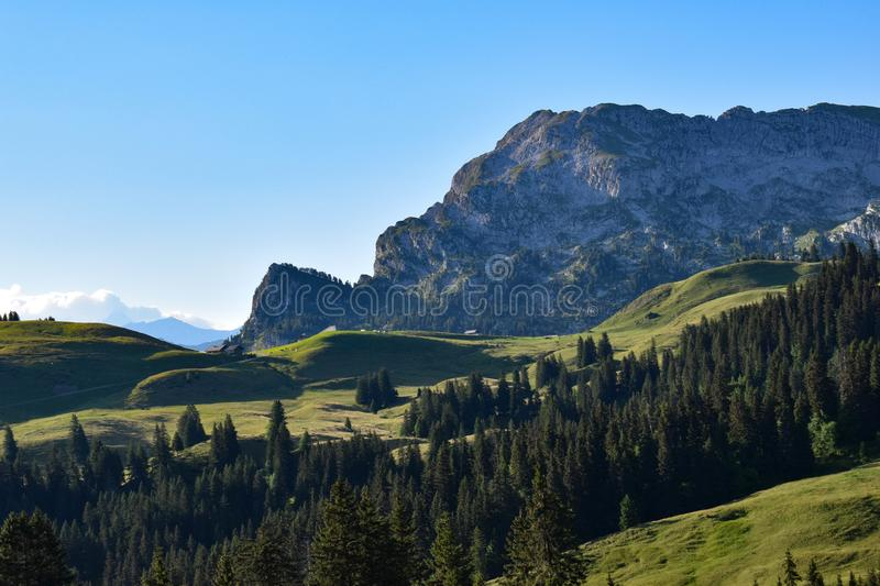 Alpine enviroment at the swiss alps. In summer stock images