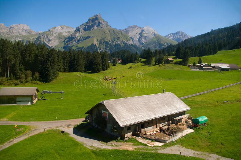Alpine farm stock images