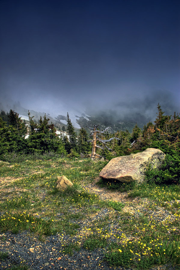 Alpine Gebirgstundra HDR stockfotos