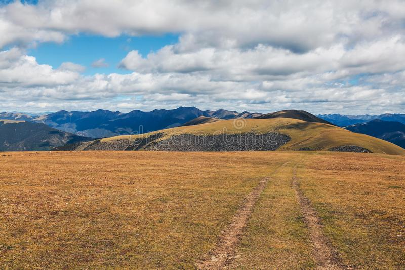 Alpine Grassland Scenery in Sichuan, China stock images
