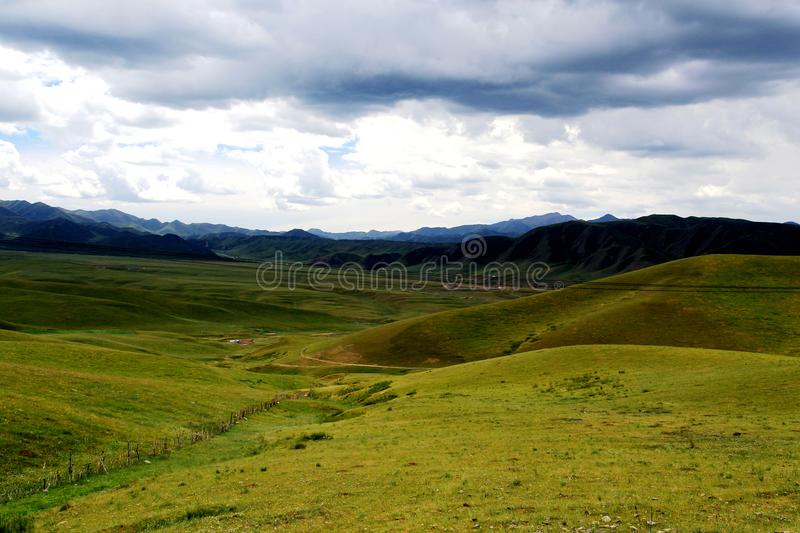 The Alpine Grassland scenery on the Qinghai Tibet Plateau royalty free stock photos