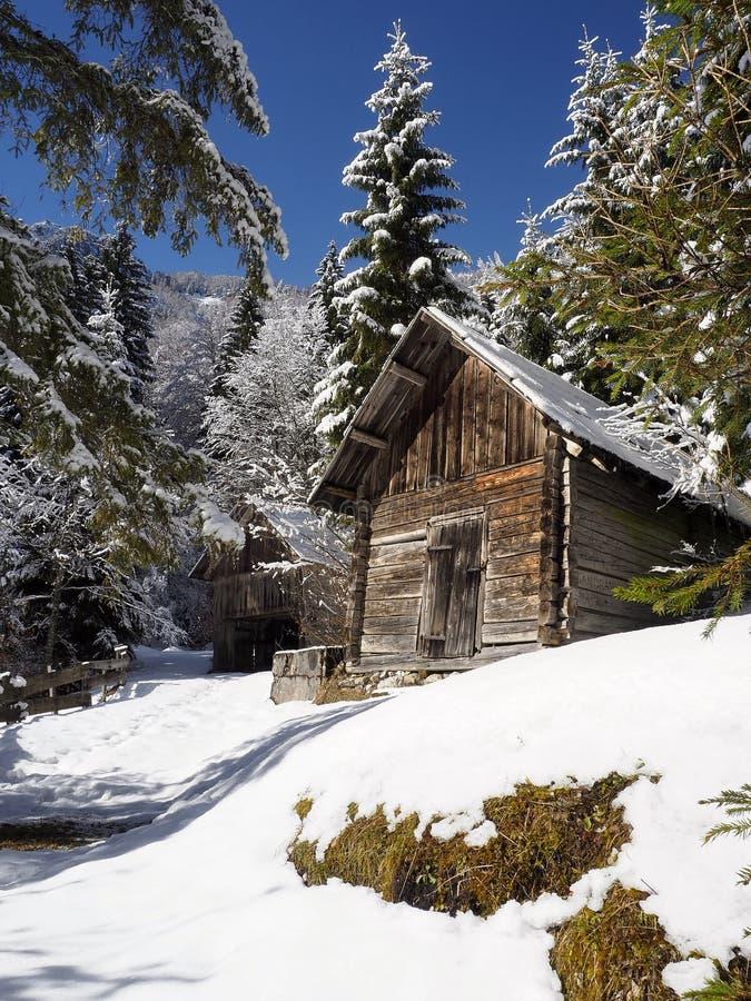 Alpine hölzerne Hütte Snowy lizenzfreies stockfoto