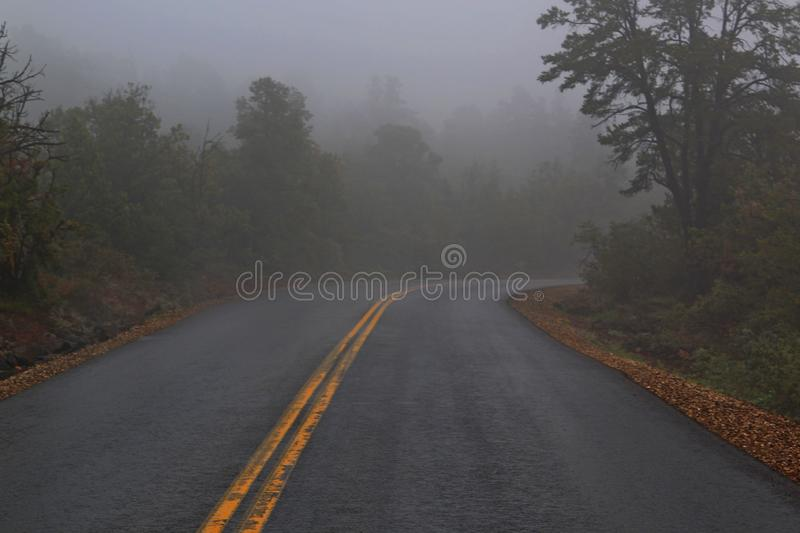 Highway leading you into the fog ahead stock photos
