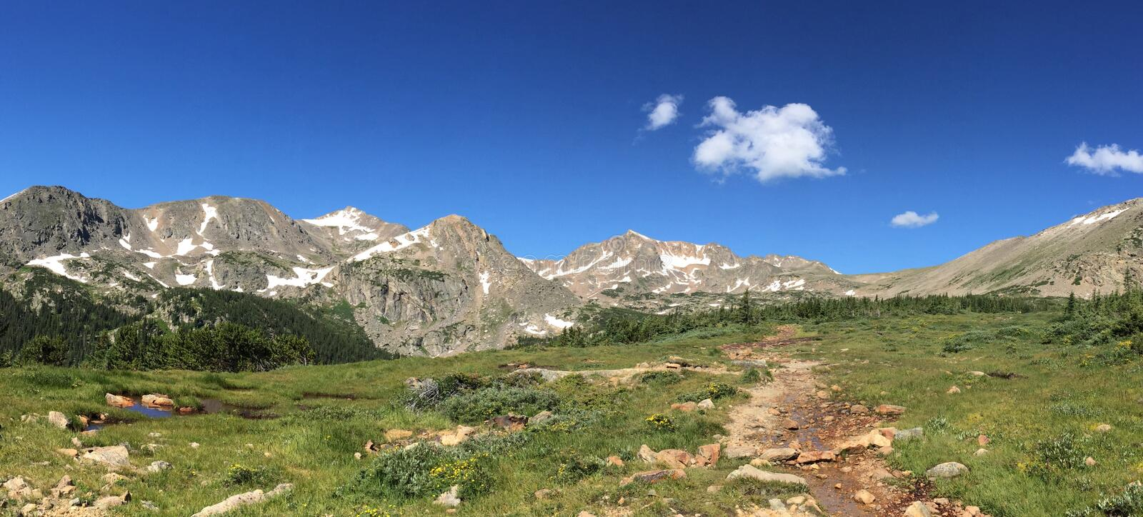Alpine hiking trail in Colorado mountains royalty free stock images