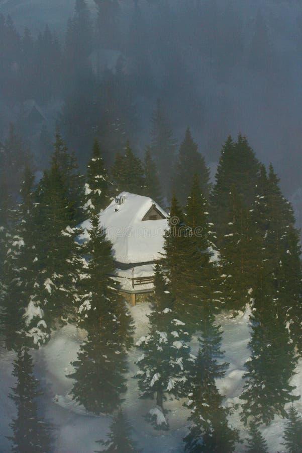 Download Alpine hut stock image. Image of hike, hill, pine, cottage - 7549077