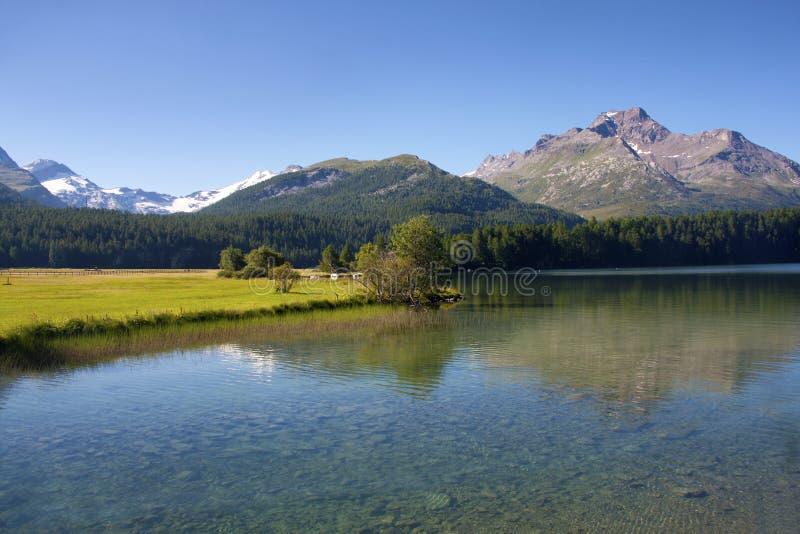 Alpine lake. In St Moritz, Switzerland stock photography