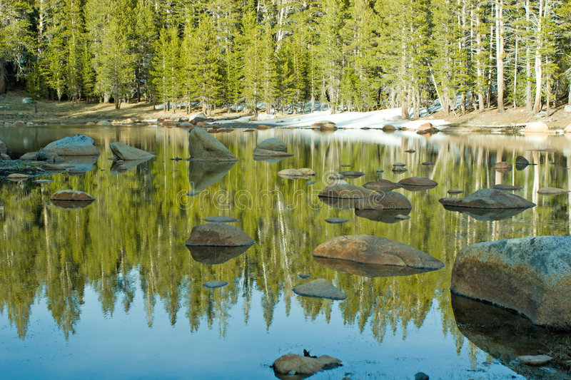 Alpine lake. And forest in Yosemite National Park royalty free stock image