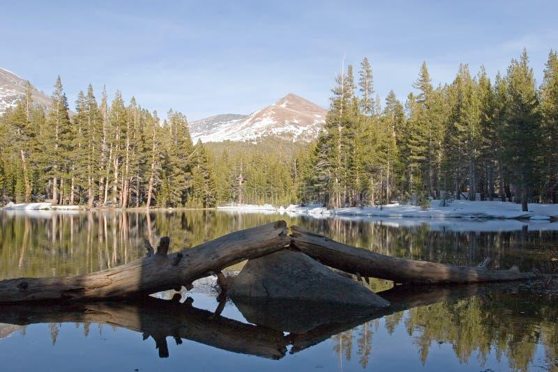 Alpine lake. In Yosemite National Park royalty free stock images