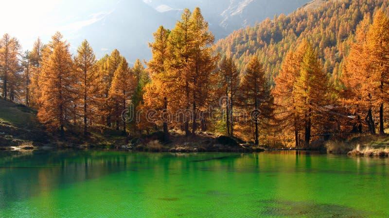 Alpine Lake in autumn, Breuil-Cervinia, Italy stock photos