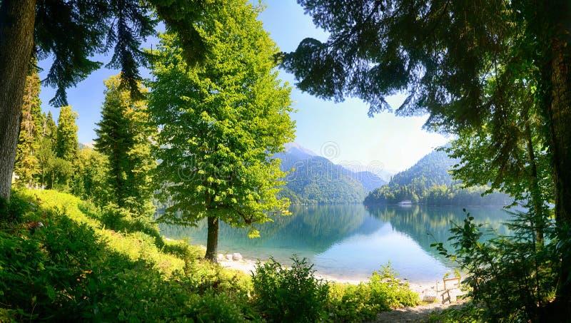 The alpine lake stock image