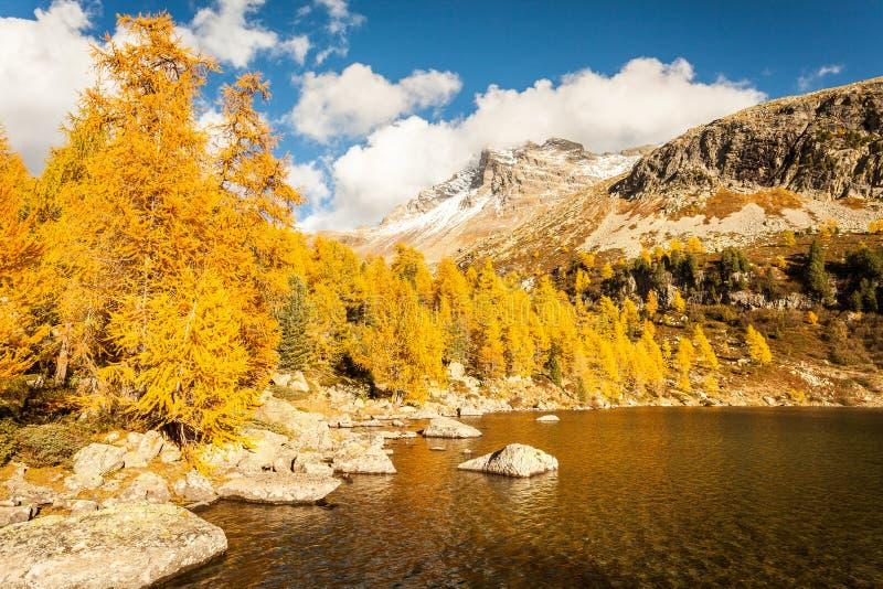 Alpine lake - Val di Campo CH. Alpine lake - autumn - Val di Campo CH stock photography