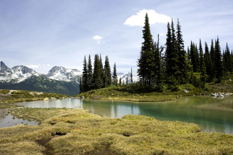 Alpine Lake Vista, Whistler, Canada. This image shows an alpine lake scene in Whistler, Canada stock photos