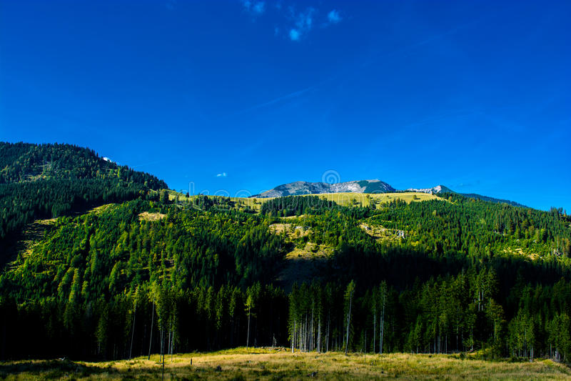 Alpine Landscape with Mountains and Forests in Austria stock photo