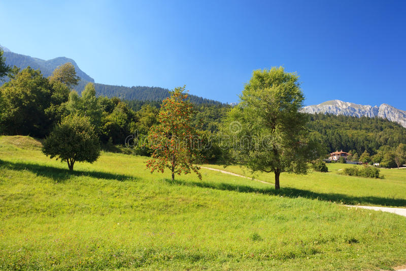 Alpine Landschaft stockfotografie