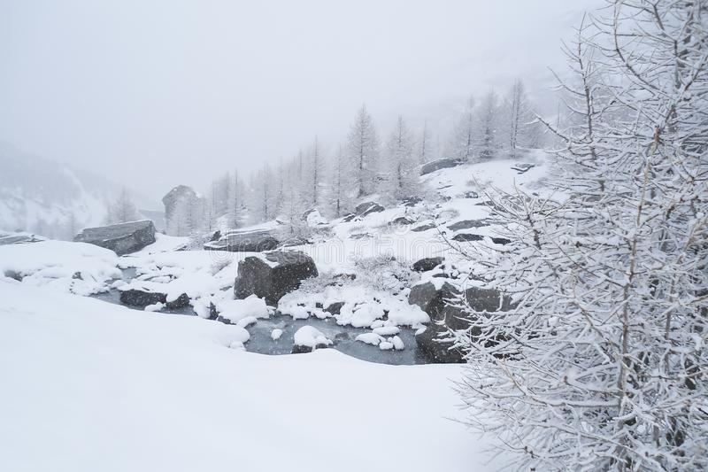 alpine Landschaft des Winters mit einem Gebirgsstrom, der über Felsen sprudelt stockbild