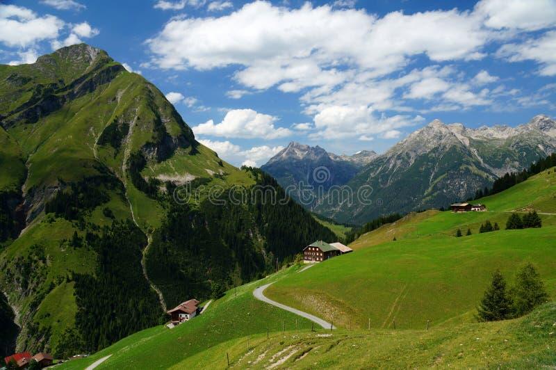 Alpine Landschaft mit zerstreuten Häusern auf einem Abhang stockfotografie